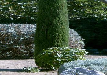 Nos services jardin d 39 eden for Tva entretien espaces verts 2016